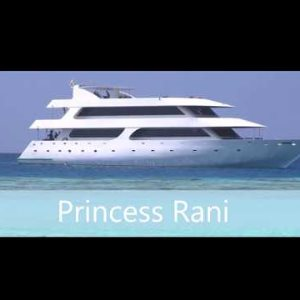 Dhoni & Princess Rani Boarding